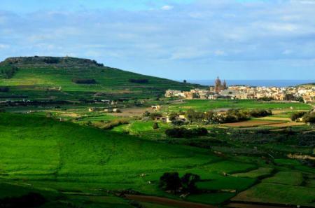 Gozo isola verde