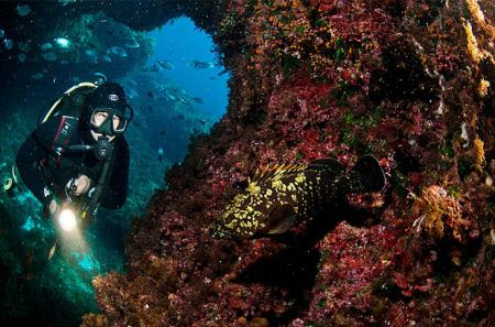 Cars hire for divers in Gozo